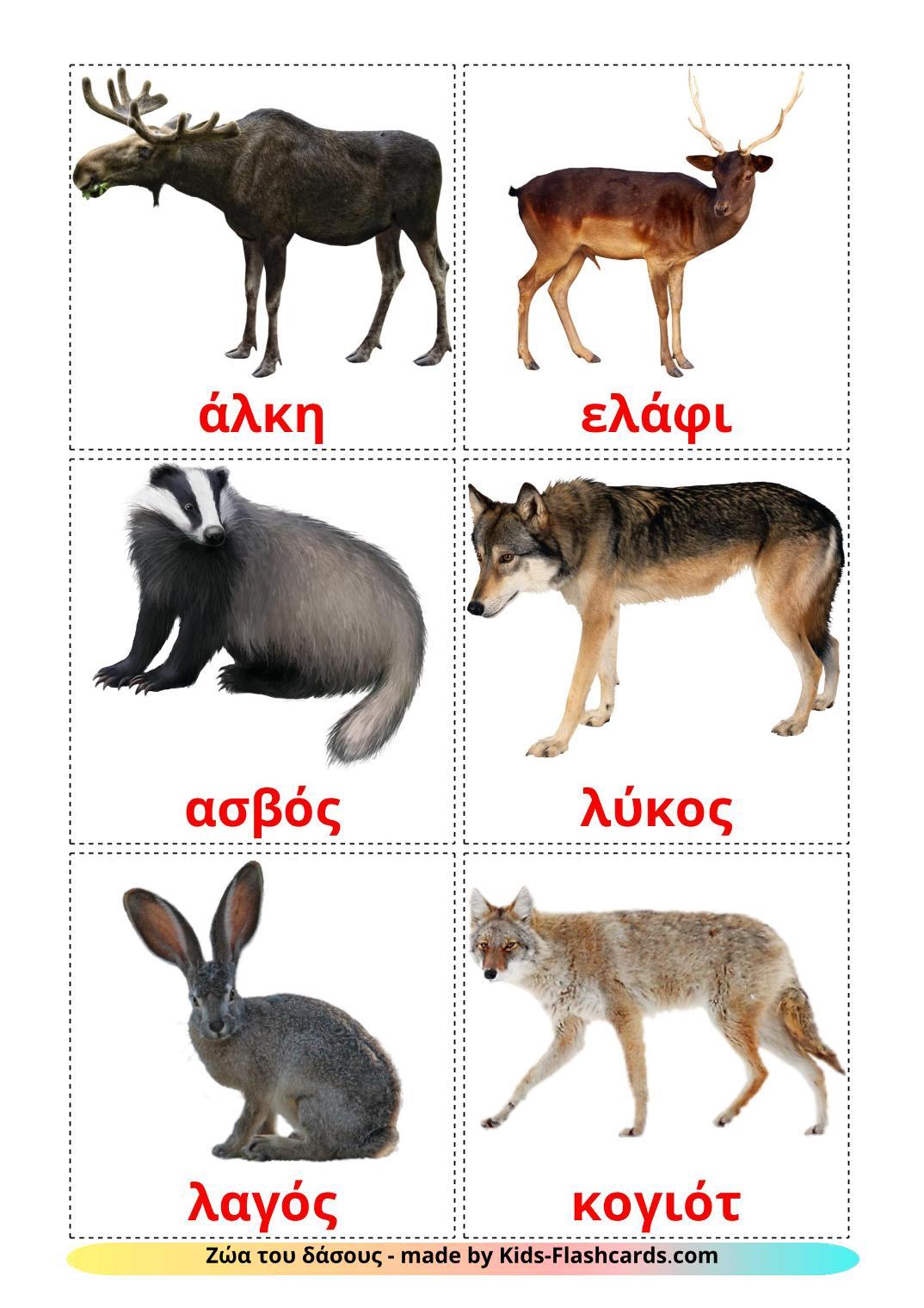 Forest animals - 22 Free Printable greek Flashcards