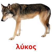 λύκος picture flashcards