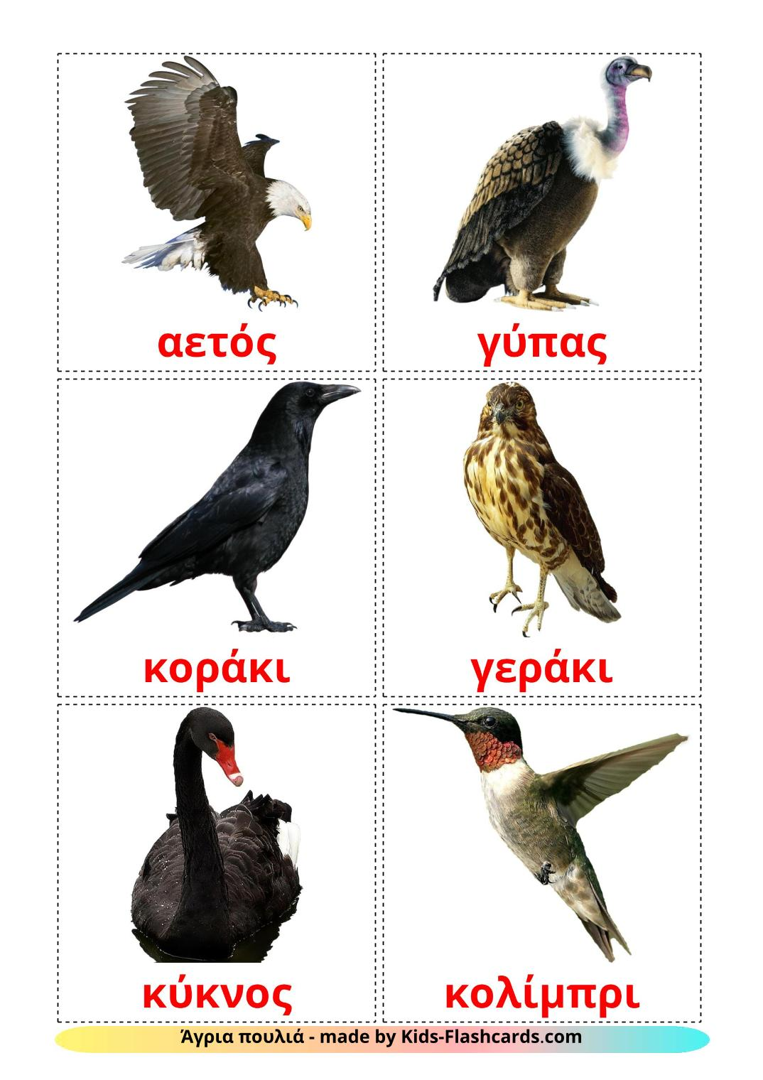 Wild birds - 18 Free Printable greek Flashcards