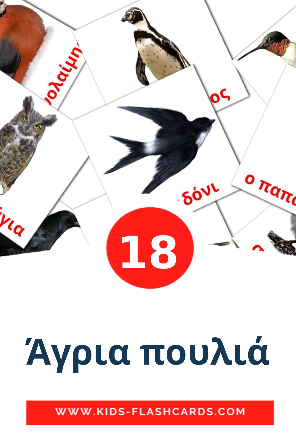 18 Άγρια πουλιά Picture Cards for Kindergarden in greek
