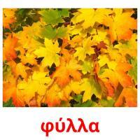 φύλλα picture flashcards