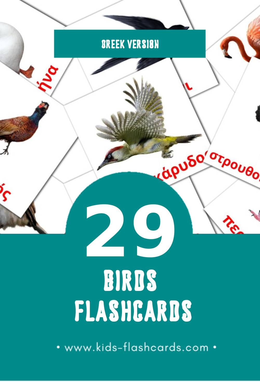 Visual Πουλιά Flashcards for Toddlers (29 cards in Greek)
