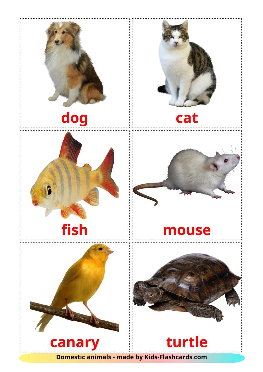 Domestic animals - 10 Free Printable english Flashcards