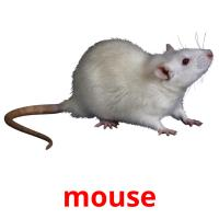 mouse picture flashcards