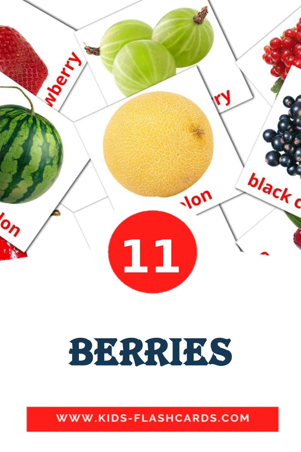 11 Berries Picture Cards for Kindergarden in english