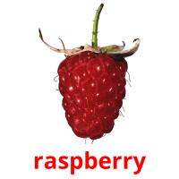 raspberry picture flashcards