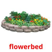 flowerbed picture flashcards