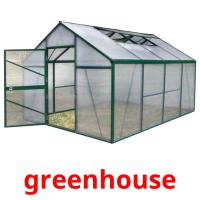 greenhouse picture flashcards