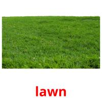 lawn picture flashcards