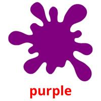 purple picture flashcards