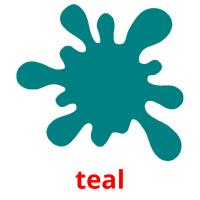 teal picture flashcards