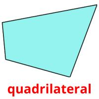 quadrilateral picture flashcards