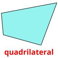 quadrilateral picture flashcards