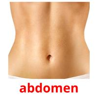 abdomen card for translate