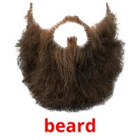 beard picture flashcards