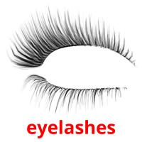 eyelashes picture flashcards