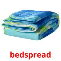 bedspread picture flashcards