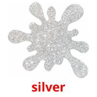 silver picture flashcards