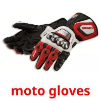 moto gloves picture flashcards