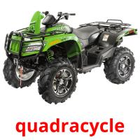 quadracycle picture flashcards