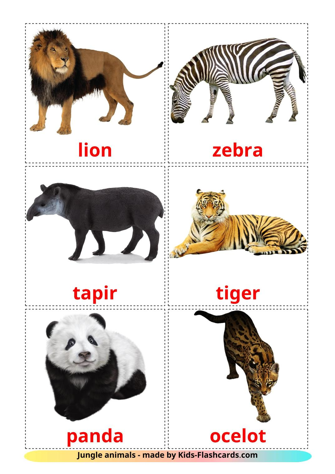 Jungle animals - 21 Free Printable english Flashcards