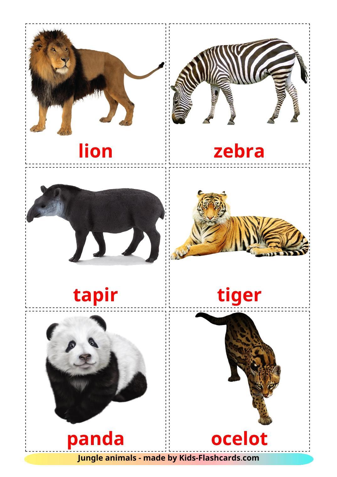 Животные африки - 21 Карточка Домана на английском