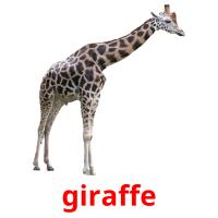 giraffe card for translate