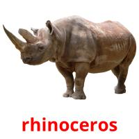 rhinoceros picture flashcards