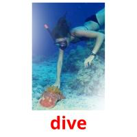 dive picture flashcards