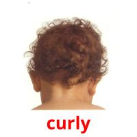 curly карточки энциклопедических знаний