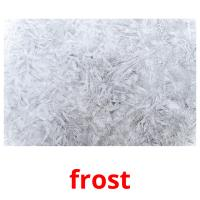 frost picture flashcards