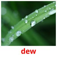 dew picture flashcards
