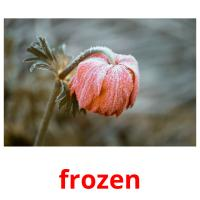 frozen picture flashcards