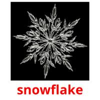 snowflake picture flashcards