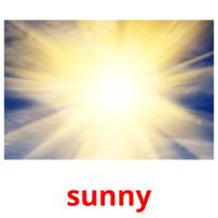 sunny picture flashcards