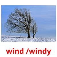 wind /windy picture flashcards