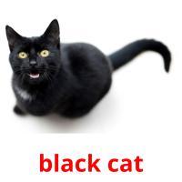 black cat picture flashcards
