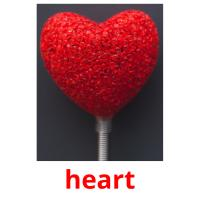 heart picture flashcards