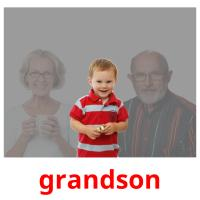 grandson picture flashcards