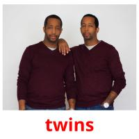 twins picture flashcards