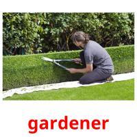 gardener карточки энциклопедических знаний