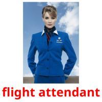 stewardess карточки энциклопедических знаний