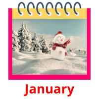 January picture flashcards
