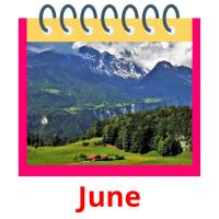 June picture flashcards