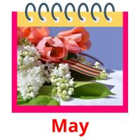 May picture flashcards