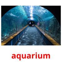 aquarium picture flashcards