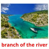 branch of the river picture flashcards
