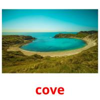 cove picture flashcards