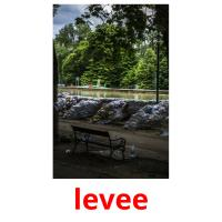 levee picture flashcards