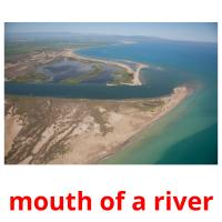 mouth of a river picture flashcards